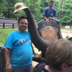 Buhalis Elephant Thailand